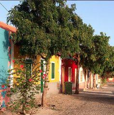 Pretty houses on Boa Vista, Cape Verde #Kaapverdie - More at https://www.kaapverdie.nl/vakantie-boa-vista/