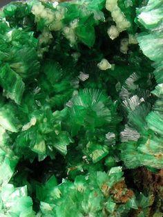 Annabergite, Ni3(AsO4)2•8(H2O)