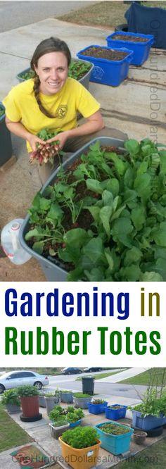 Urban Garden Ideas Photos since Garden Landscaping Dubai once Urban Gardening Fo… - Modern
