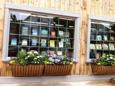 window display at Bunch of Grapes bookstore - Martha's Vineyard, MA