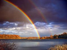 Double Bows by Nicholas_T, via Flickr