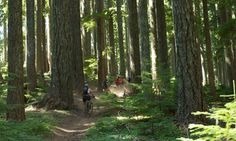 Motivate for Mountain Bike Oregon | Travel Oregon