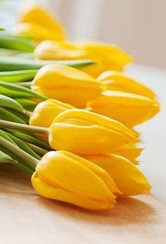 Tip, gele tulpen passen perfect bij je party like a pineapple party.
