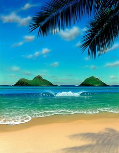 Hawaii Painting Beach Scene Paradise