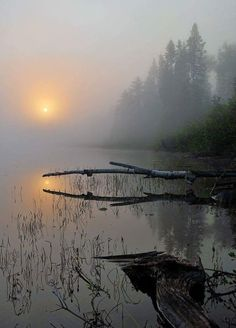 Foggy September morning (Ontario) by Mark McCulloch Can you do a sun tattoo like this? Beautiful World, Beautiful Places, Beautiful Pictures, Amazing Photography, Nature Photography, Beautiful Landscape Photography, Photography Lighting, Scenic Photography, Aerial Photography