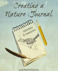 Creating a Nature Journal - Amy's Wandering Diy Nature, Nature Study, Science And Nature, Nature Crafts, Journal Prompts For Kids, Study Journal, Journal Pages, Journal Ideas, Garden Journal