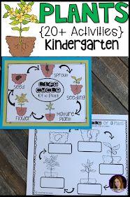 Little Giggles and Wiggles: Plants {20+ Activities} for Kindergarten