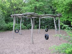 The Learning Landscape: The Five Way Tire Swing