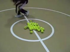 A team based tag game for students Materials: tennis balls, hula hoops, open space. We have played this game inside and out. Physical Education Activities, Pe Activities, Motor Skills Activities, Activity Games, Health Education, Gym Games, Games To Play, Hula Hoop Games, Warm Up Games