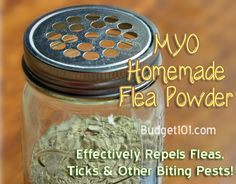 Make your own inexpensive holistic Herbal Flea powder as the best frontline solution to prevent fleas, ticks and other biting insects from harming your beloved pet Whole Food Recipes, Dog Food Recipes, Flea Powder, Ferret Toys, Dog Beds For Small Dogs, Flea Treatment, Powder Recipe, Drying Herbs, Pet Health