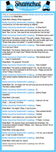 A conversation between Chat Noir and Badly Injured by Hawkmoth! Ladybug