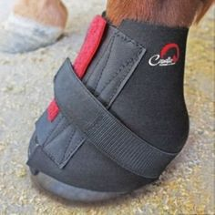Cavallo Sport Boot Pastern Wraps 2-Pack Large by Cavallo. Save 33 Off!. $13.32. Cavallo Wraps are soft, pull-on pastern wraps that provide additional protection to both Simple and Sport Boots softee-leather-covered foam collar. Ideal for horses with sensitive skin or if chafing is a problem. Small fits boot sizes 0-2; Medium fits sizes 3-4; Large fits sizes 5-6.