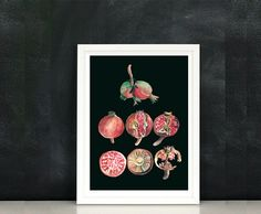 Pomegranates watercolor paintinghome decor  by lunapeonyart