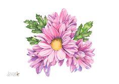Chrysanthemum watercolour painting print by LouiseDeMasi on Etsy