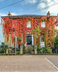 There's a lot going on in autumn in London, from festivals and events to foliage and food fairs. Days Out With Kids, Family Days Out, Couples Days Out, Secret Places In London, Autumn Leaves, Autumn Fall, London Blog, London House, Autumn Aesthetic