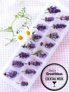 LAVENDER A lavender-flower ice cube not only makes a colorful addition to water or iced tea, but also brings out the flavor of gin and bourb...