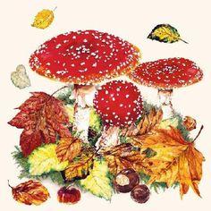 Set of 2 40 Paper Napkin Paper Serviettes 3 Ply 33 x 33 cm Autumn Fall Sample Pumpkins in a Bowl