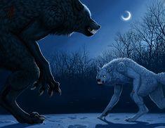 A werewolf and a lykos (an artificially created werewolf) fighting!
