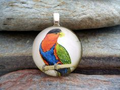 Parrot Jewelry  Black Capped Lory  Parrot Necklace by SolasJewelry, $9.95