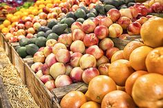 Bounty by Caitlyn Grasso. A bountiful harvest arrayed at Avila Barn in Avila, California!