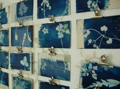 Postcards from Saltaire by Hannah Lamb These little cyanotype prints are all made using 'weeds' from around the World Heritage Site of Saltaire village and will create both individual snapshots of place and time, and as a group, a kind of map of Saltaire flora.