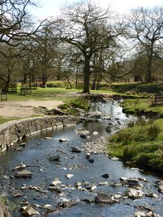 Bradgate Park, Leicestershire, I spent many happy days here as both a child and an adult. Could not be further from the deserts of Southern California where I live now!