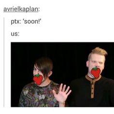 I am Mitch's expression 365 days a year