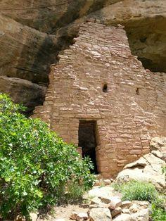 Cliff dwellings in Mesa Verde, CO