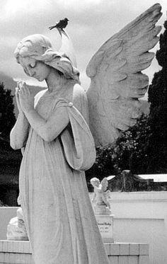 Cemetery Angel, Costa Rica