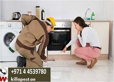 pest control bed bugs, pest control in dubai cockroaches mosquitoes bed bug bites killapest #bed_bug_bites #bedbugs #bed_bugs #bed_bug