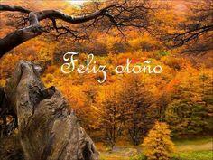 Feliz otoño