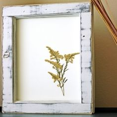 Make your own pressed flower frames with this easy tutorial. It's a cheap and easy way to add to your wall decorations.