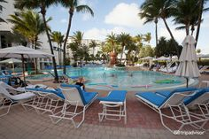 Loews Miami Beach Hotel (FL) - Hotel Reviews - TripAdvisor