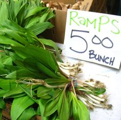 Ramps for sale!  Ramps can demand a higher price depending on where you are selling them and how you market them. For more information ramps, watch Jim Chamberlain's presentation on eXtension.org: http://www.extension.org/pages/67942/presentation-on-ramps-allium-tricoccum-in-appalachia