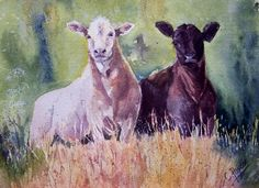 Original Watercolour 'Curiosity' by CPascoeWatercolours on Etsy