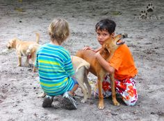 Loving bond between children and dogs, at our nature Retreat Bela Natureza