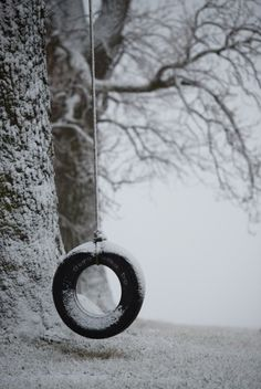 Abandoned tire swing on a snowy day. Winter Szenen, I Love Winter, Winter Magic, Winter Time, Winter Season, Winter Christmas, Winter Colors, Winter's Tale, Snowy Day
