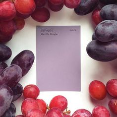 Now introducing: Gentle Grape SW This sweet new color would be a fun addit Purple Paint Colors, Bedroom Paint Colors, Lavender Paint, Grape Color, Sherwin William Paint, Color Inspiration, Interior Inspiration, Exterior Colors, House Colors