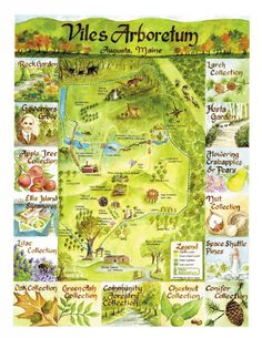 arboretum map hand drawn - Google Search