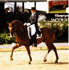 Kyra Kyrklund's Smaller Steps for Greater Balance   Dressage Today