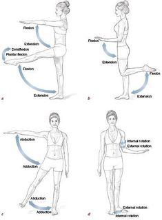 Unlock Your Hip Flexors Hip Flexor Pain: Hip Flexor Stretch: Back pain, low energy, and wei… Hip Flexor Pain, Hip Flexor Exercises, Hip Pain, Back Exercises, Back Pain, Hip Flexors, Stretches, Human Body Anatomy, Human Anatomy And Physiology