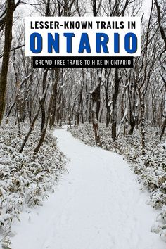 Are you looking for places to hike in Ontario without the crowds? Check out these Lesser-Known Ontario Trails that don't have the crowds of popular Ontario hikes but are just as fabulous! I hiking trails in Ontario I Ontario Canada I where to hike in Ontario I Ontario hiking trails I Ontario travel I get outdoors I hike Ontario I where to go in Ontario I what to do in Ontario I Ontario outdoors I where to hike in Ontario I walking paths in Ontario I off the beaten path Ontario I #hiking #Ontario Cool Places To Visit, Places To Go, Ontario Travel, Visit Canada, Travel Reviews, Travel Tips, Travel Guides, Canada Travel, Romantic Travel
