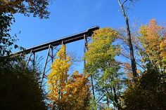 Kinzua Skywalk,  Kinzua State Park, Pennsylvania