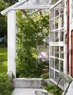 Plats för avkoppling. En korgstol får gott och väl plats inne i växthuset och ger en skön plats för rogivande avkoppling, 750 kronor, Evensen Antik. Dörren till växthuset är konstruerad som en stalldörr, det vill säga tvådelad vilket är praktiskt om man bara vill vädra.