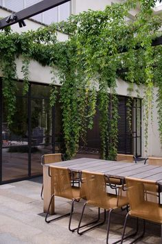 For simple yet elegant outdoor space, give this outdoor room pergola design ideas a try. For making it beautiful, use vines. It is perfect to keep things neutral, so use a wooden unfinished table with simple chairs. Best Outdoor Furniture, Outdoor Garden Furniture, Outdoor Rooms, Modern Furniture, Outdoor Retreat, Rustic Furniture, Furniture Ideas, Antique Furniture, Furniture Design