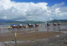 Horse racing on Ballyferriter Strand, Kerry. Stunning backdrop.