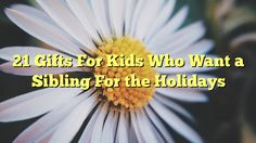 21 Gifts For Kids Who Want a Sibling For the Holidays - http://doublebabystrollerreviews.net/21-gifts-for-kids-who-want-a-sibling-for-the-holidays/