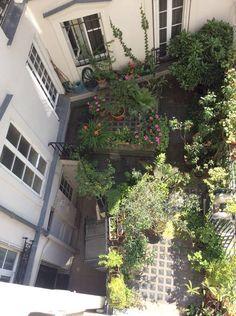 Cour d'immeuble (sous Chambre 2) Paris Apartment Rentals, Paris Apartments, Rental Apartments, Old Building, Roots, Places, Ile De France, Yard, Bedroom
