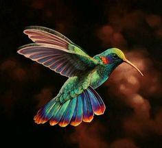 Resultado de imagen para colibri ho'oponopono