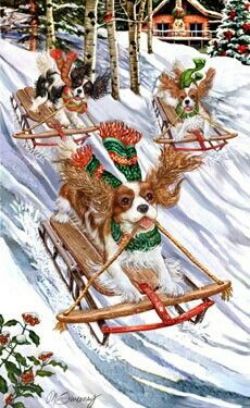 Cavalier King Charles Spaniel – Graceful and Affectionate Christmas Scenes, Noel Christmas, Christmas Animals, Vintage Christmas Cards, Winter Christmas, Cavalier King Charles, King Charles Dog, King Charles Spaniel, Illustration Noel